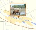 Река Кевсала