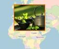 Как правильно выбирать чай в Пятигорске?