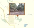 Роща крымской сосны или озера хутора Октябрь и села Бешпагир