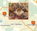 Где можно купить свежий мед и прополис в Пятигорске?