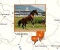 Где покататься на лошадях в Пятигорске?